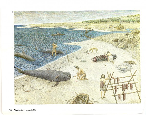 whale-beach-illustration-annual-1986