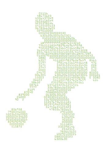 hoop-data-dreams-paul-sahre