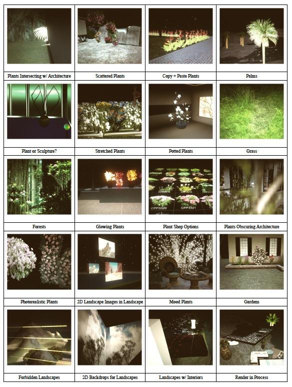 """Plant Classification"" by Sara Ludy"