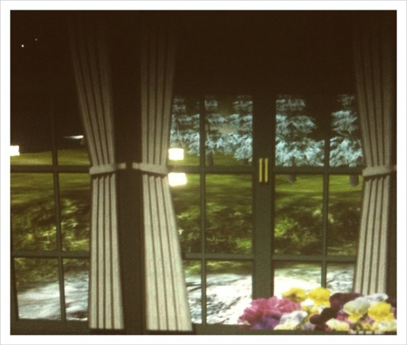 """Window Series"" by Sara Ludy"