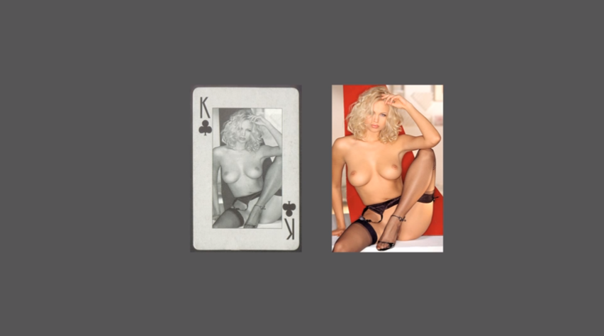 darja-bajagic-erotic-playing-cards