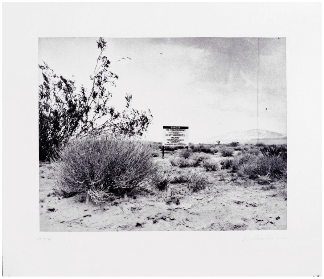 "Ed Ruscha's ""Desert Gravure"" (2006)"
